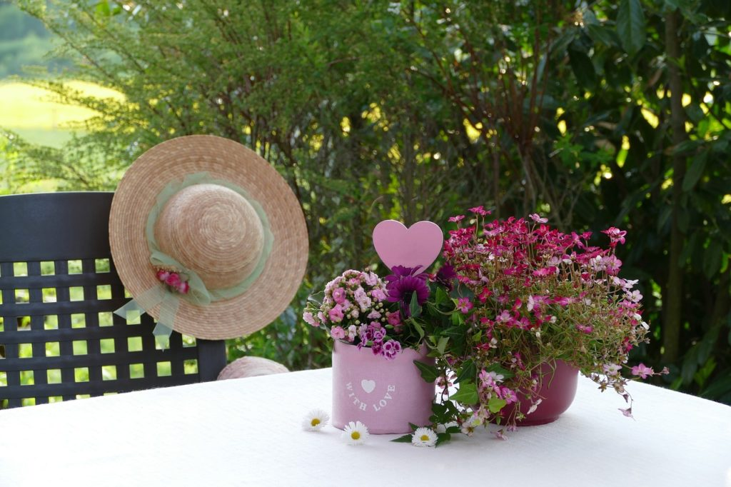 Promesse de fleurs, de la graine, encore de la graine!