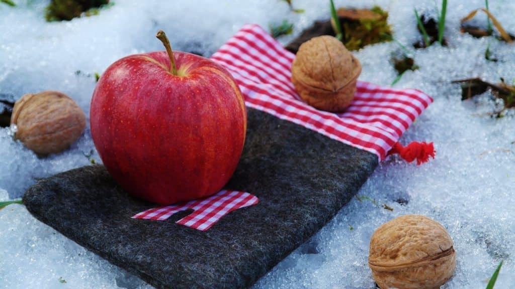 alimentation hiver